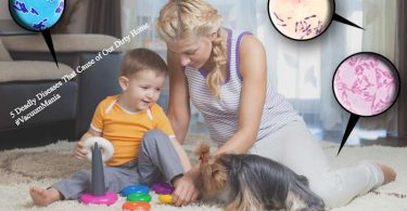 5 Deadly diseases that cause of our dirty home