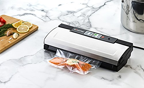 Gourmia GVS435 Vacuum Sealer Review