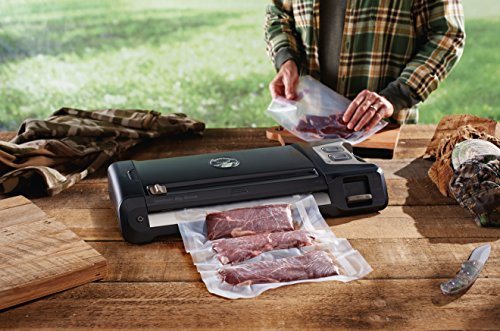 GameSaver Big Game GM710-000 Vacuum Sealing System Review
