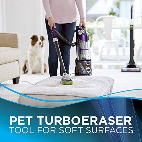 Bissell 20431 Review - Is it good enough to remove pet hair?