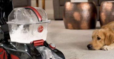 Hoover FH50251PC good enough to remove pet hair