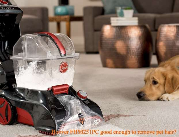 Hoover FH50251PC Power Scrub Elite Review – Does it good enough to remove pet hair?